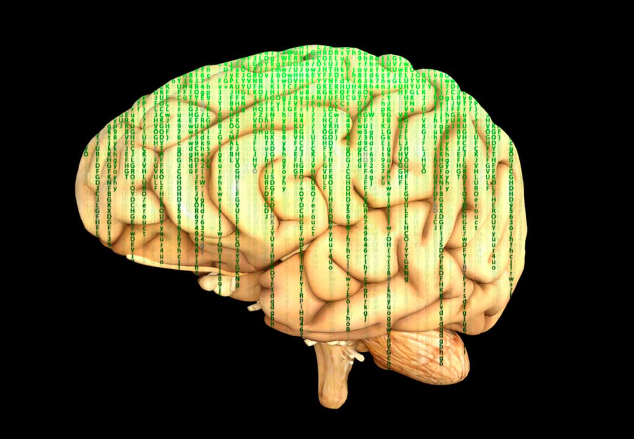 ¿cómo cuidar mi cerebro?